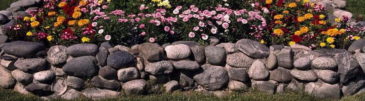 Цветники на даче своими руками из камня фото в9