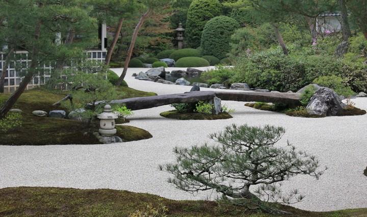 Рисунки на камнях своими руками для сада фото 802